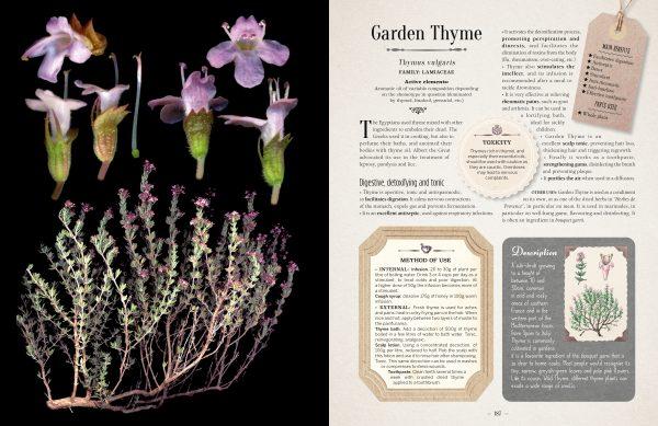 healing properties in plants in book